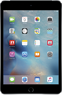Apple® iPad® mini 4 64GB in Space Gray