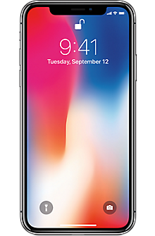 Apple® iPhone® X 64GB in Space Gray (Certified Pre-Owned - Very Good)