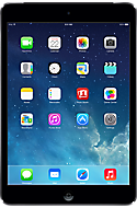 Apple® iPad® mini 16GB in Slate