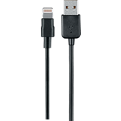 Charge and Sync Lightning to USB Cable -10 ft