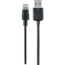 Charge and Sync Lightning to USB Cable -10 ft.