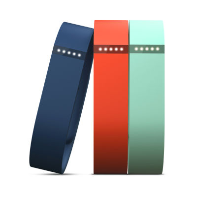Fitbit Flex Accessory 3-Pack Large