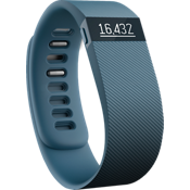 Fitbit Charge Wireless Activity Wristband - Slate Large