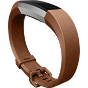 Alta HR Leather Accessory Band Large - Brown