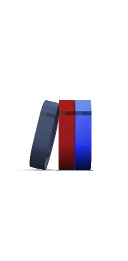 FITBIT FLEX 3 PACK WRISTBANDS L//G BLACK BLUE RED