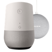 Google Home & Home Mini Bundle