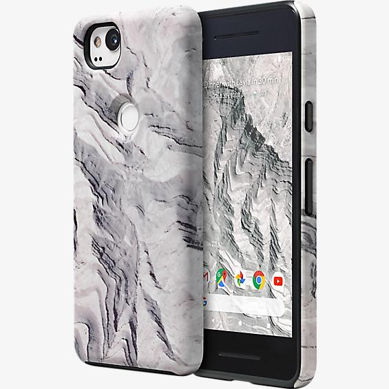 Google Earth Live Case for Pixel 2