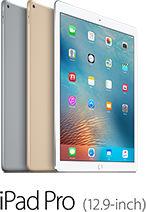 iPad Pro(12.9-inch)