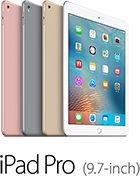 iPad Pro(9.7-inch)