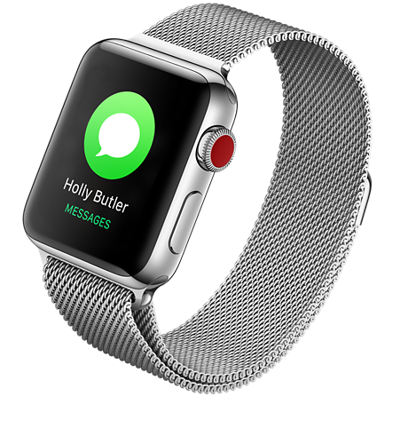 new product ae3c1 139ce Apple® Watch Series 3 Stainless Steel 38mm Case with Milanese Loop