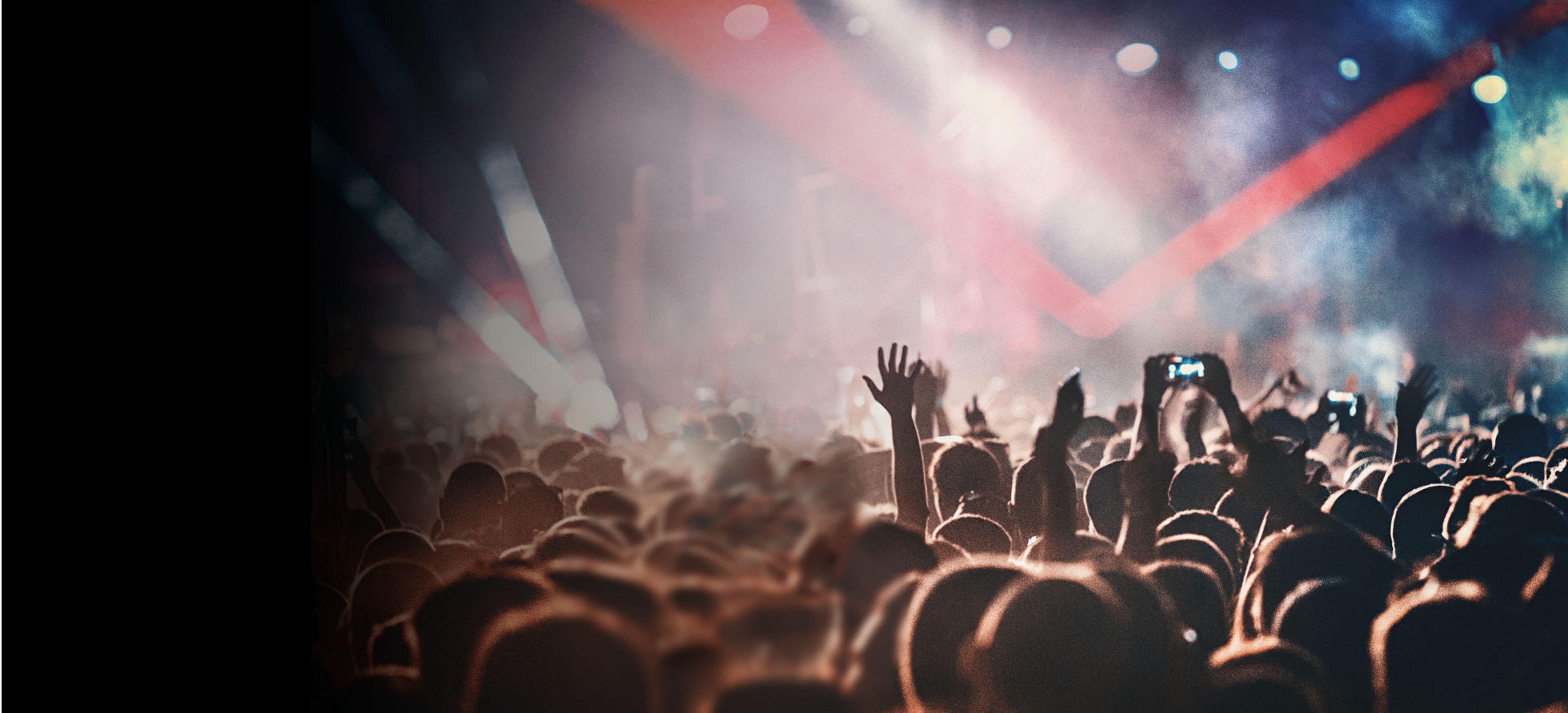 Multitud en el concierto